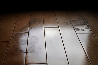 Kids and Dogs Don't Mind Mud, and Neither Do Hardwood Floors