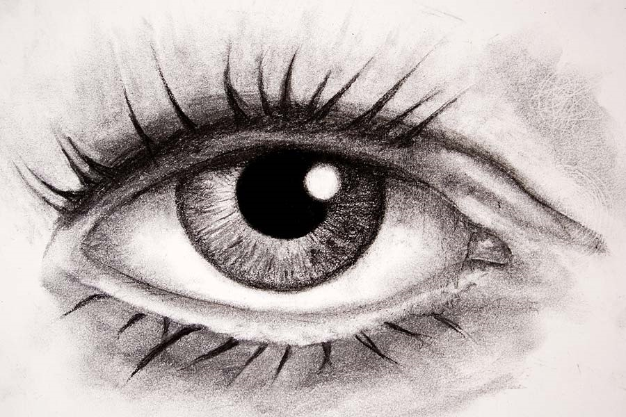 artist's eye2